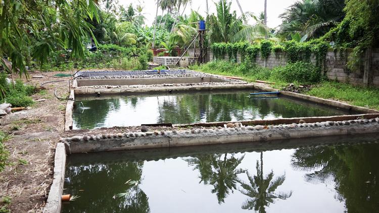 progetto-sviluppo-rurale-difesa-ambientale-acqua-filippine-4